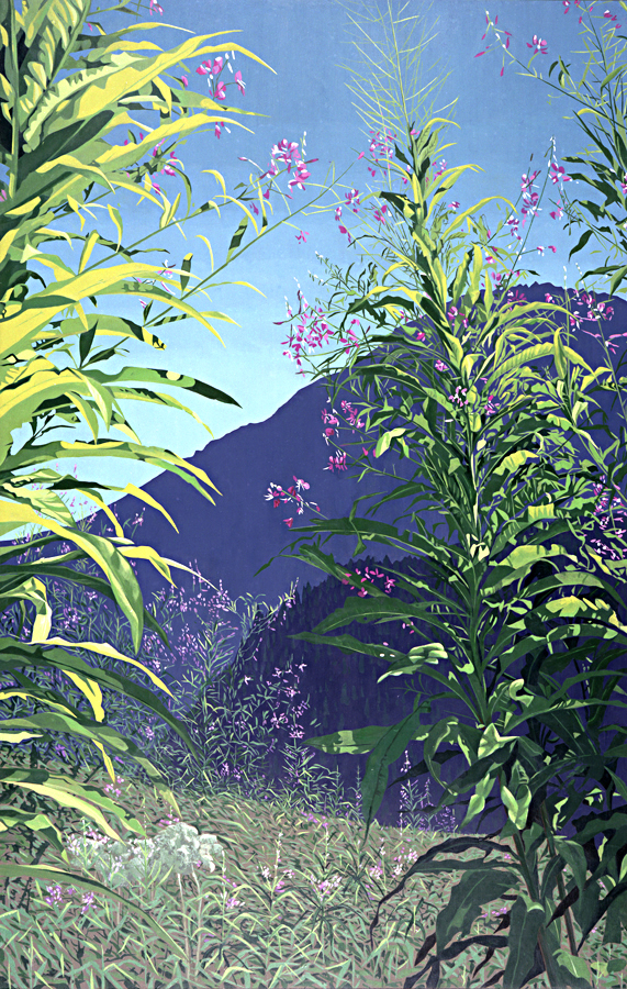 Fireweed no. 1
